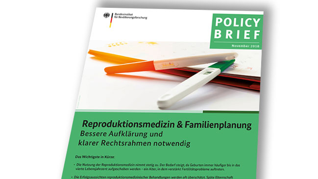 Titelbild Policy Brief November 2018